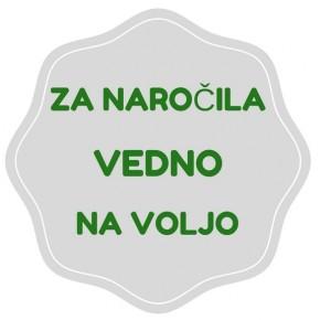 garancija_navoljo)